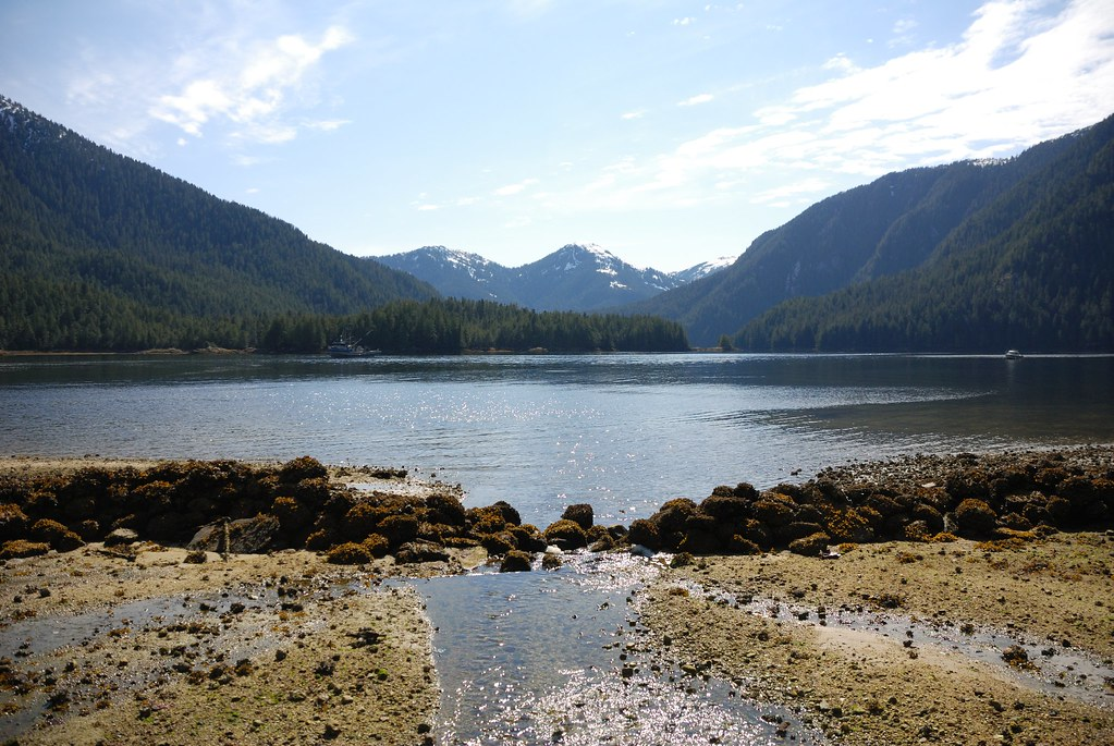Fish Trap at Lowe Inlet
