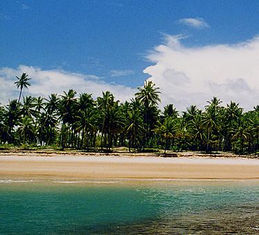 Coral reef pool at Algodoes Beach - Marau - Bahia - Brazil
