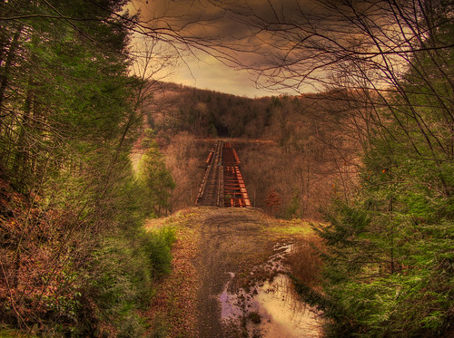 railroad trestle trees fall river tunnel