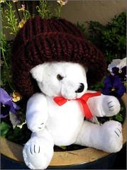 Claret Hat