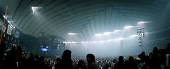 one night dejavu: inside tokyo dome