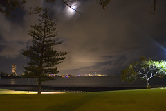 Gold Coast by Night_2350