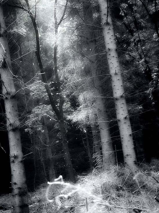 Photography - Light Beam by Nicholas M Vivian