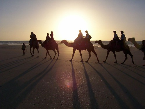 """camel sunset tour"" ,Cable Beach , Broomecamel senset tour mel WA broome"