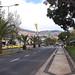 Avenida do Mar, Funchal