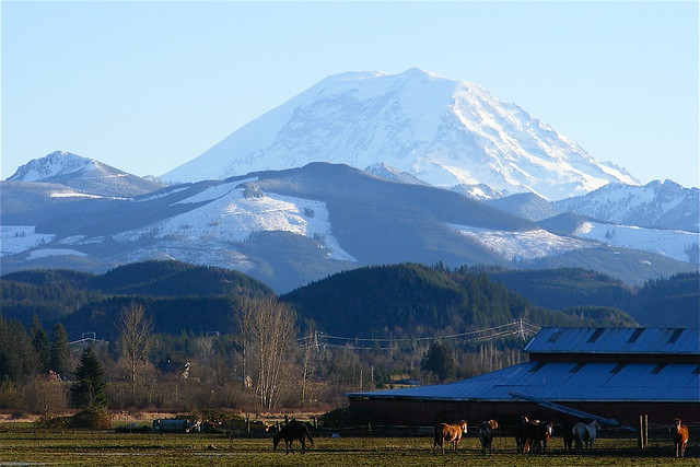 Mt Rainier From The Enumclaw Plateau Flickr Photo
