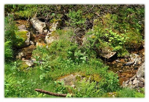 alps österreich green austria alpen trickle hohetauern bösenstein scheibelsee edelrautehütte