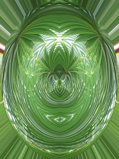 fern cameo abstract