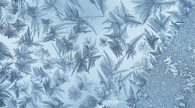 Ice Feathers from Flickr via Wylio