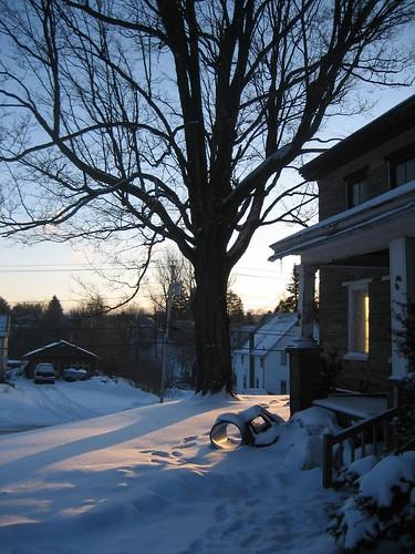 winter house snow ny newyork tree sunrise steps sd450 20081 2008b