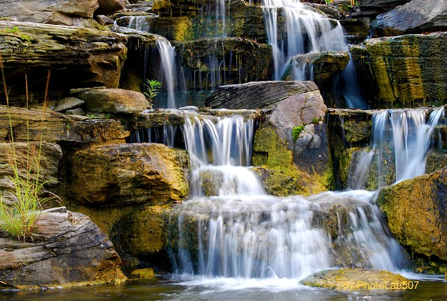 Meijer Garden Waterfall-Grand Rapids