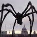 A black spider is threatenening London....