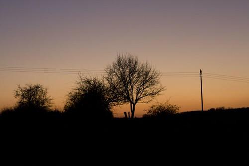 trees sunset france de soleil silhouettes arbres lorraine parc vosges couché barrières nomexy