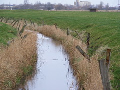 fen, wetland, floodplain, agriculture, polder, levee, channel, canal, ditch, rural area, marsh,