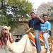 En el camello en Rock Garden con mi amigo de Suriname Radjen