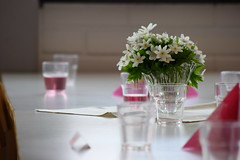 flower arranging, flower, purple, white, floral design, red, table, centrepiece, banquet, floristry, pink,