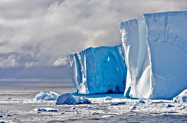 Southern Ocean - Ice Face & Bergy Bits, Scotia Sea