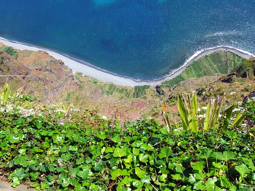 Madeira - Cabo Girao - Looking Straight Down