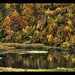 Autumn times two = Autumn-nmutuA ©Paco CT
