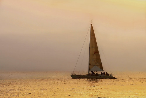 Sail Through Golden Mist