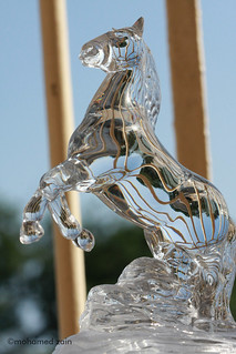 arabian glass horse