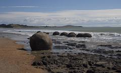Moeraki Boulders (i)