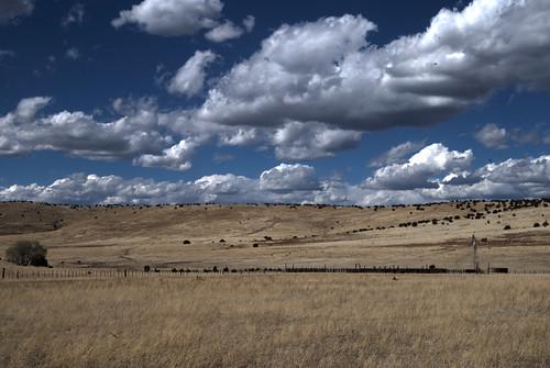 The Harden Cienega Ranch - Blue Mountains-e