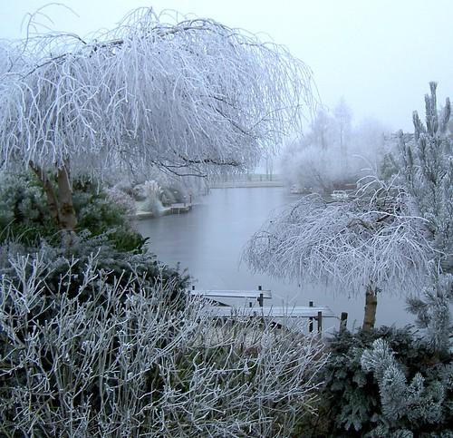 Winter wonder land 2
