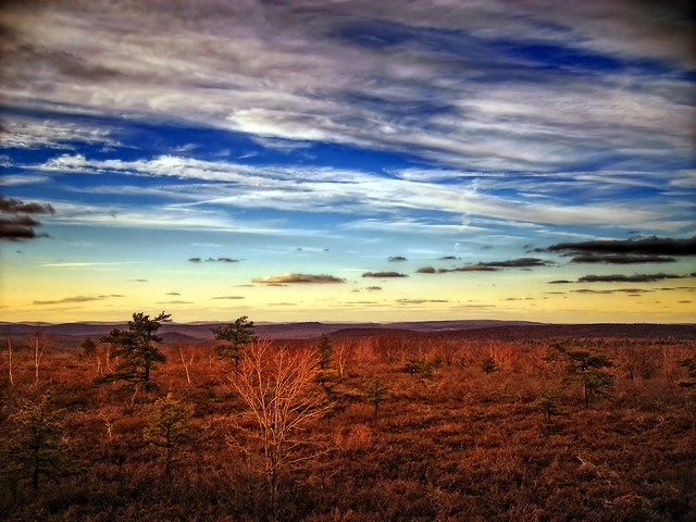 Barrens, Fujifilm FinePix F470