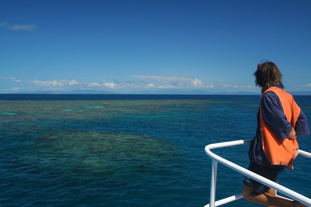 cairns_snorkeltrip_06