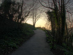 Bristol Clifton