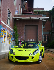 Lotus at Mellwood