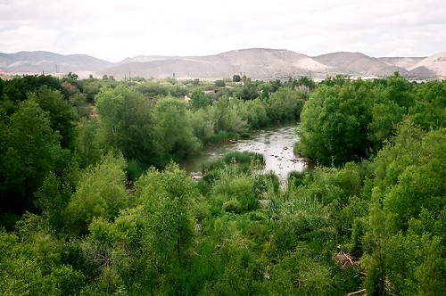 verde river -may 2008