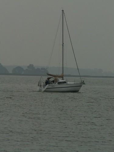 Die Mannschaft ist mit Booten am Darss beim Born angekommen von Bord wird im Hafen ein Tau zugeworfen 172