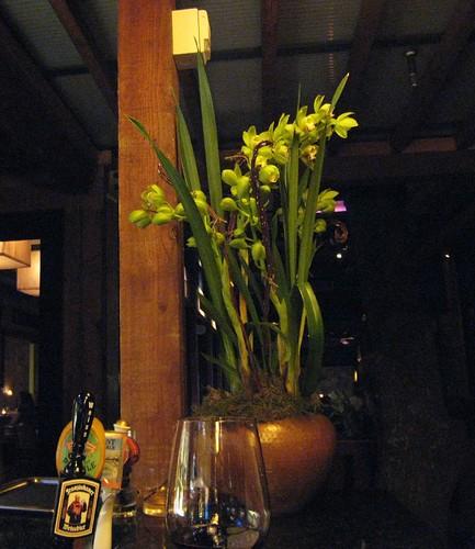 napa, calistoga ranch, orchids, green IMG_1292