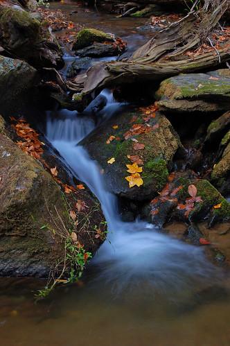 longexposure fall stream maryland nikond50 baltimorecounty naturesfinest blueribbonwinner hemlockgorge