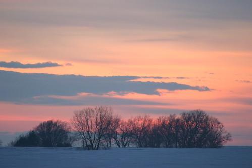 trees winter sunset sky orange sun snow clouds horizon iowa february markevans chimothy27
