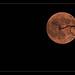 Smoke Tinged Halloween Moon by peasap
