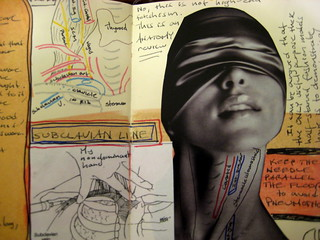 Journal 3: Neck Anatomy--Subclavian