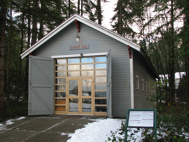 shed type swinging doors for garage