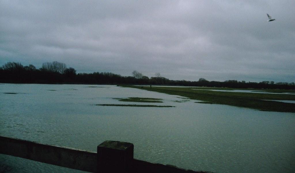 Book 1 Walk 13 (Oxford round) Flooded Port Meadow Wolvercote Oxfordshire. D.Allen Vivitar 5199mp
