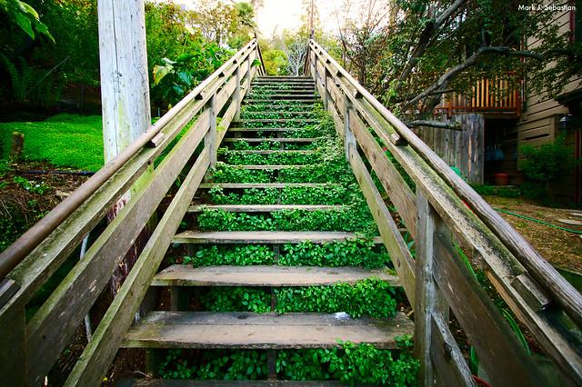 Stairway (#19621) from Flickr via Wylio