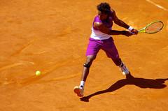 Roland Garros 2011 et sport