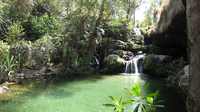 La piscine naturelle flickr photo sharing for Piscine naturel