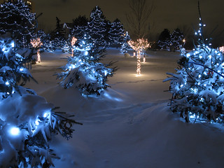 Chinguacousy Park Christmas Lights | by Allen McGregor