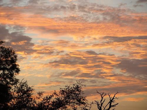 africa sky sun sol public clouds sunrise landscape southafrica geotagged dawn soleil nuvole alba © himmel olympus ciel cielo afrika sole nuages sonne zuiko paesaggio rsa allrightsreserved krugernationalpark krugerpark kruger 2007 limpopo afrique sudafrica áfrica paulkruger santostefano zd tancredi ©allrightsreserved krugernp 1442mm december2007 phalaborwa 26december2007 parcokruger e410 olympuse410 overtheexcellence carlotancredi coloursplosion december20072007 georeferenziata