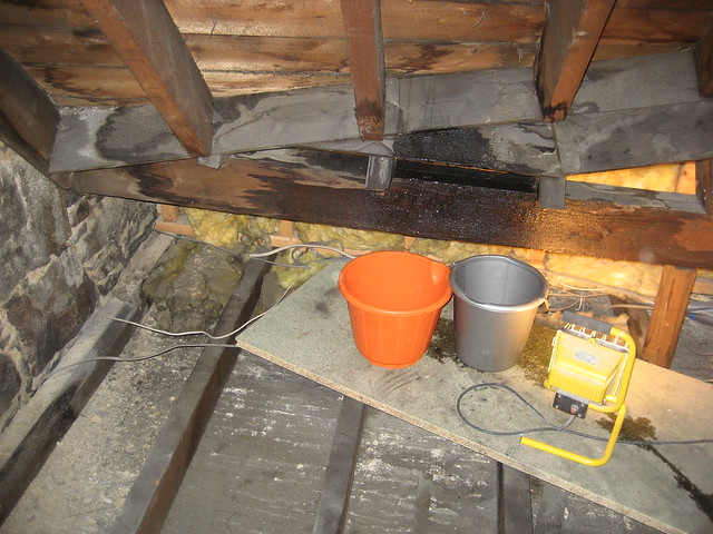 Roofing problems outside the home home jobs by mom for Roof leaking in winter