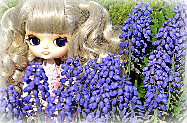 Zoie's (Dal Jolie) last hurrah for Spring