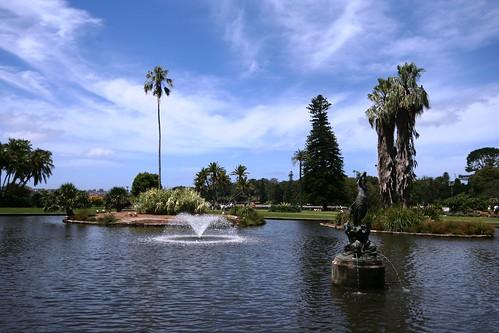 Royal Botanic Gardens IMG_8402