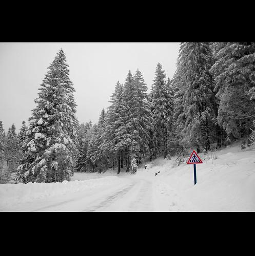 road winter bw snow wow 10faves 25faves mywinners mywinner aplusphoto ultimateshot diamondclassphotographer flickrdiamond superhearts platinumheartaward